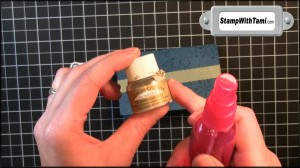 Mix 1 oz Rubbing Alcohol & 5-6 drops Champagne Mist Shimmer paint into spray bottle and shake well.